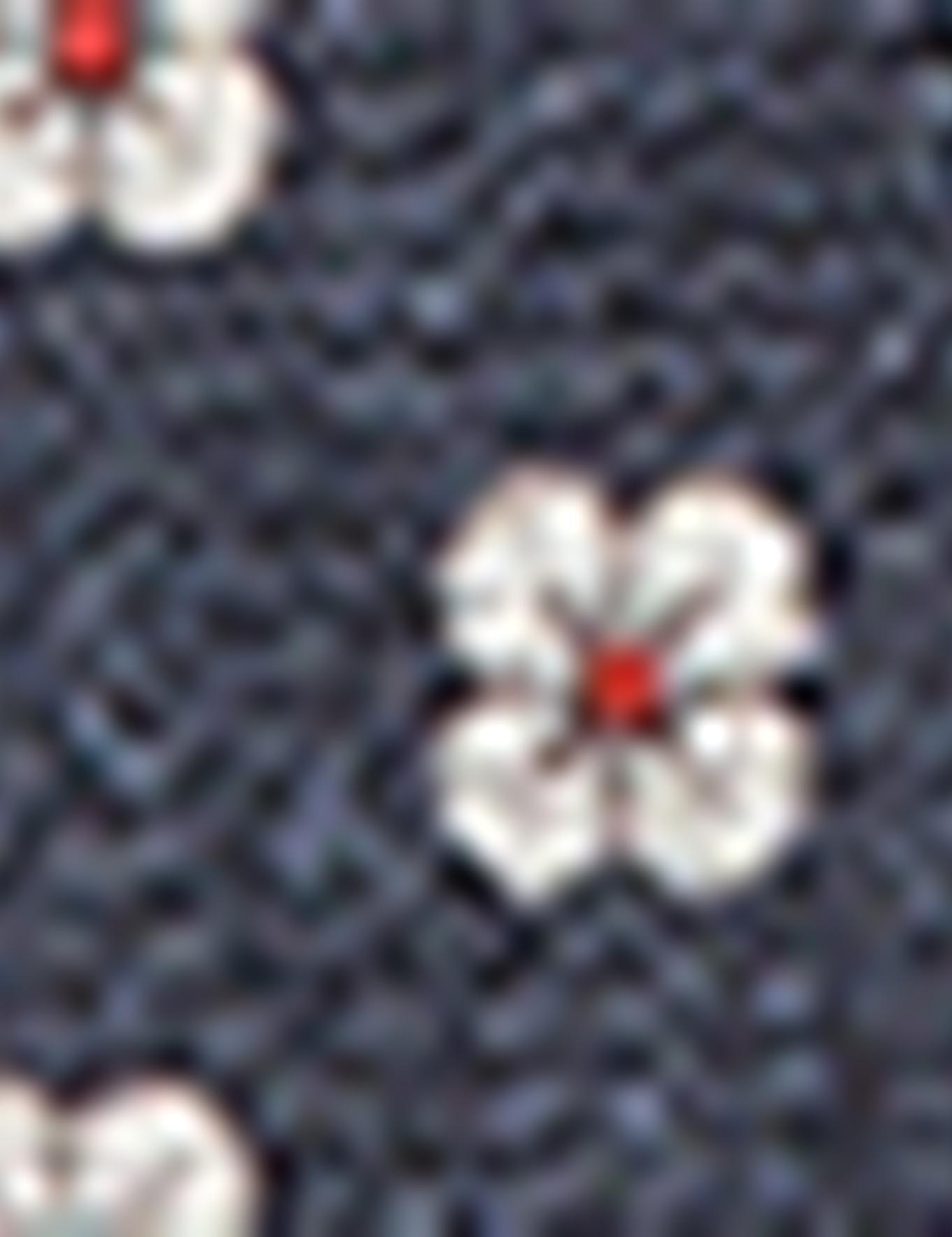 Lacivert Kravat - 50155688001