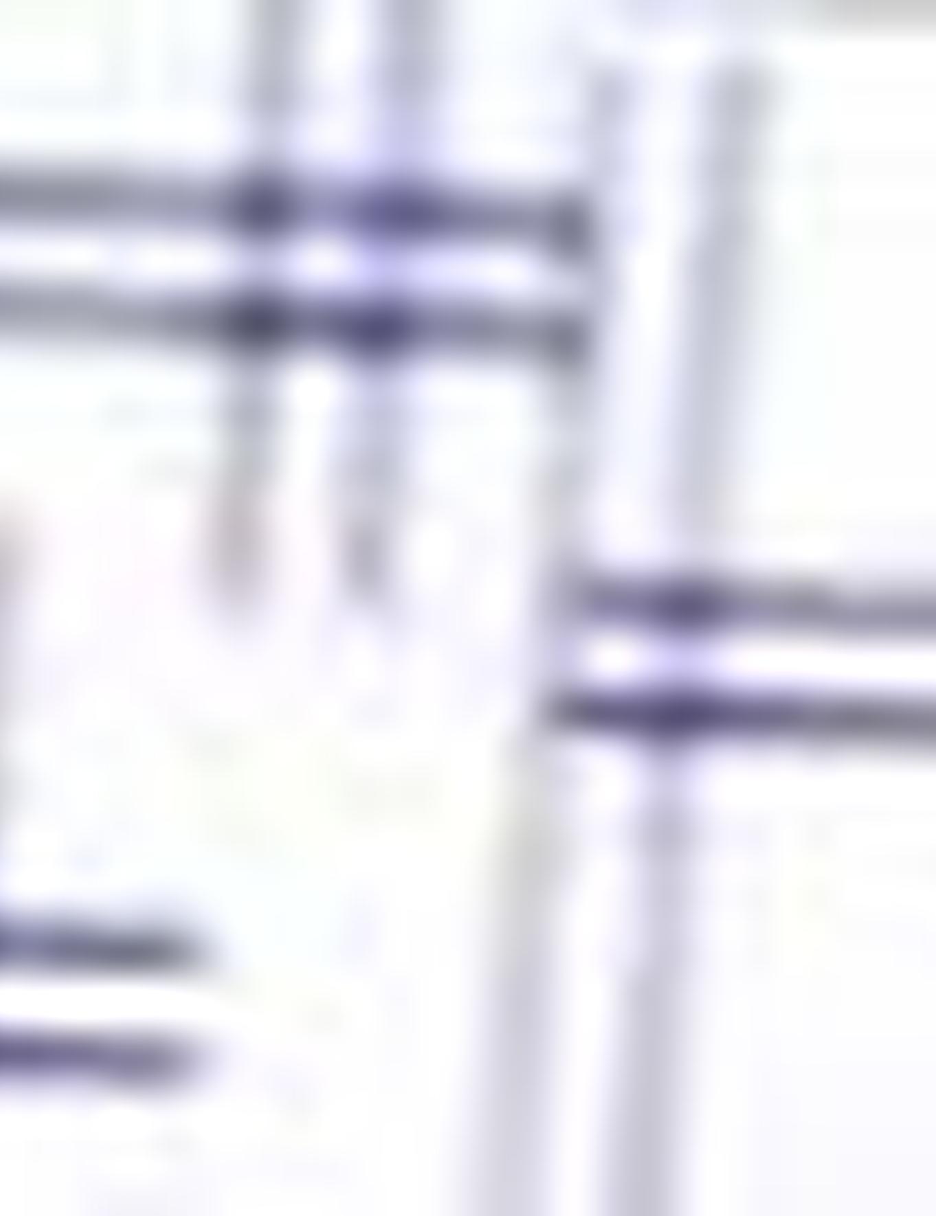 İndigo Slim Fit Gömlek - 50202507005